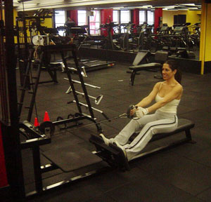 Cable Seated Row Exercise 1