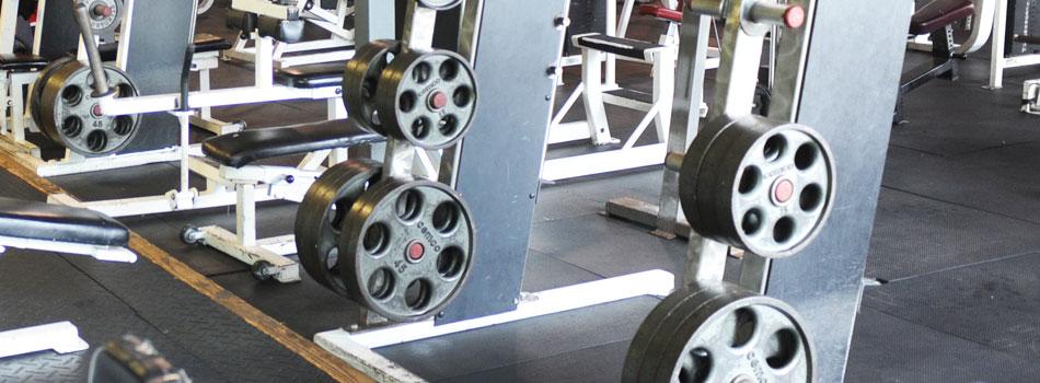 bronx-gym-free-weights