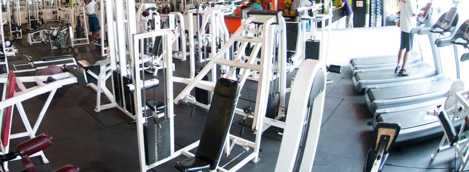 bronx-gym-strength-machines