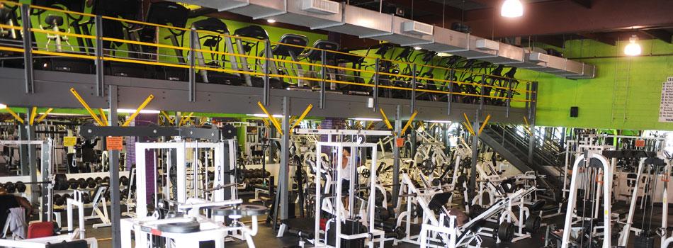 bronx-gym