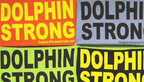dolphin-strong